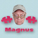 Puzzling with Magnus
