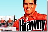 brawny_paper_towels