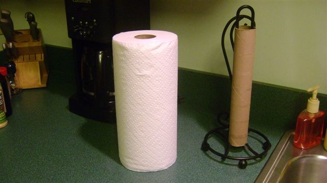 Problem Statement Which paper towel is the most absorbent    ppt     Brawny Paper Towels