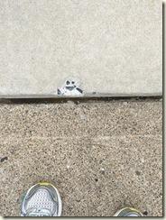 sidewalk man